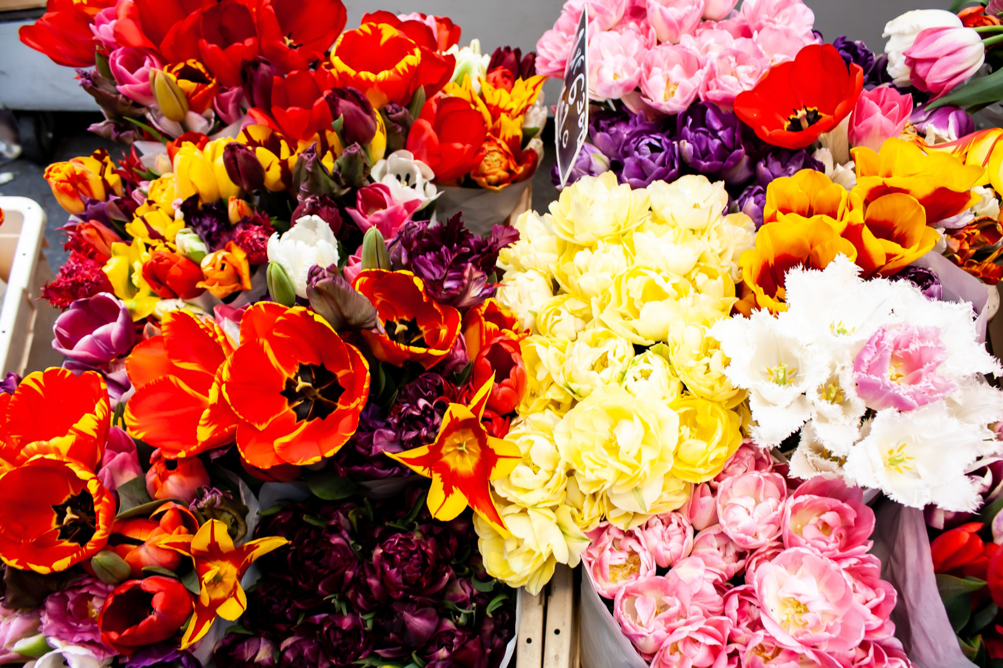 Beautiful flower markets to travel amsterdam