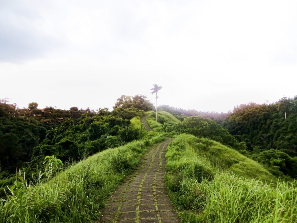 Can´t miss the Campuhan Ridge Walk oin the Bali 2 week itinerary