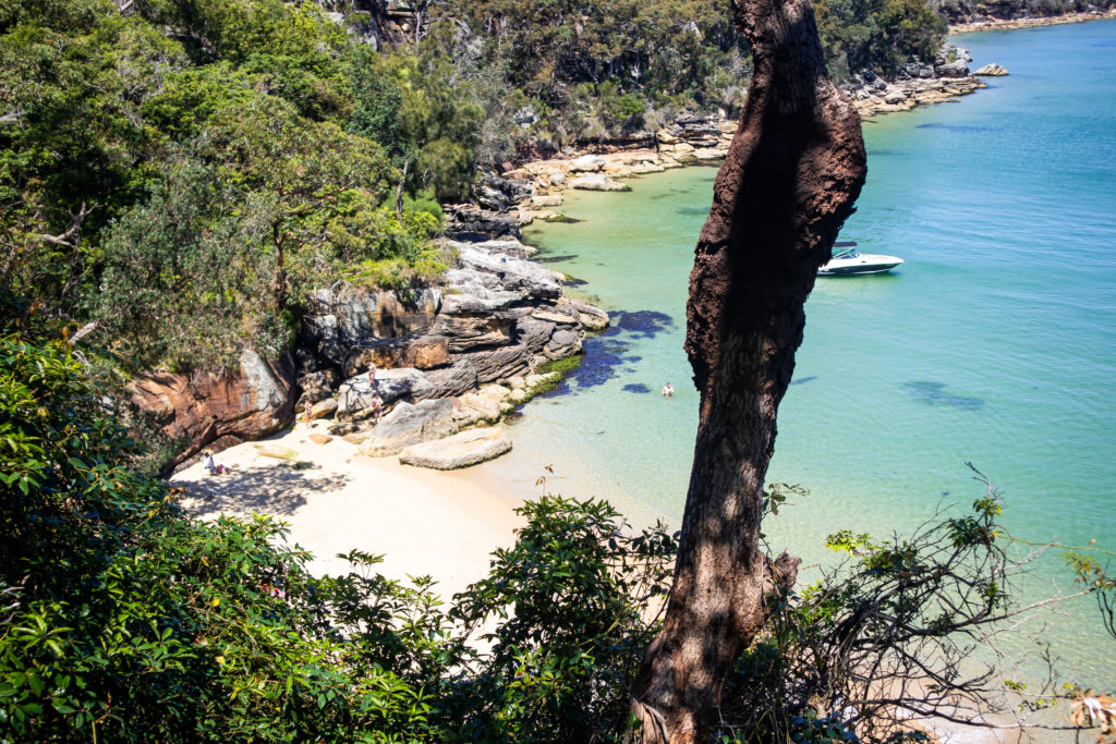 Secluded beach on the Spit Bridge to Manly walk