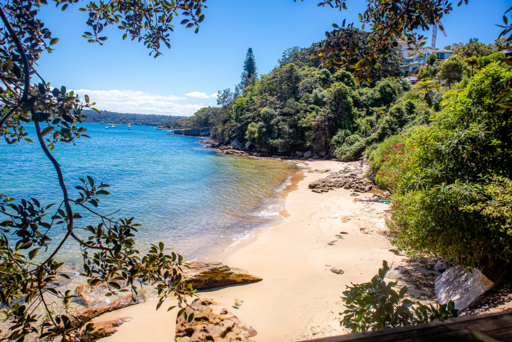 Beach in Sydney on the Rose Bay to Watsons Bay Walk