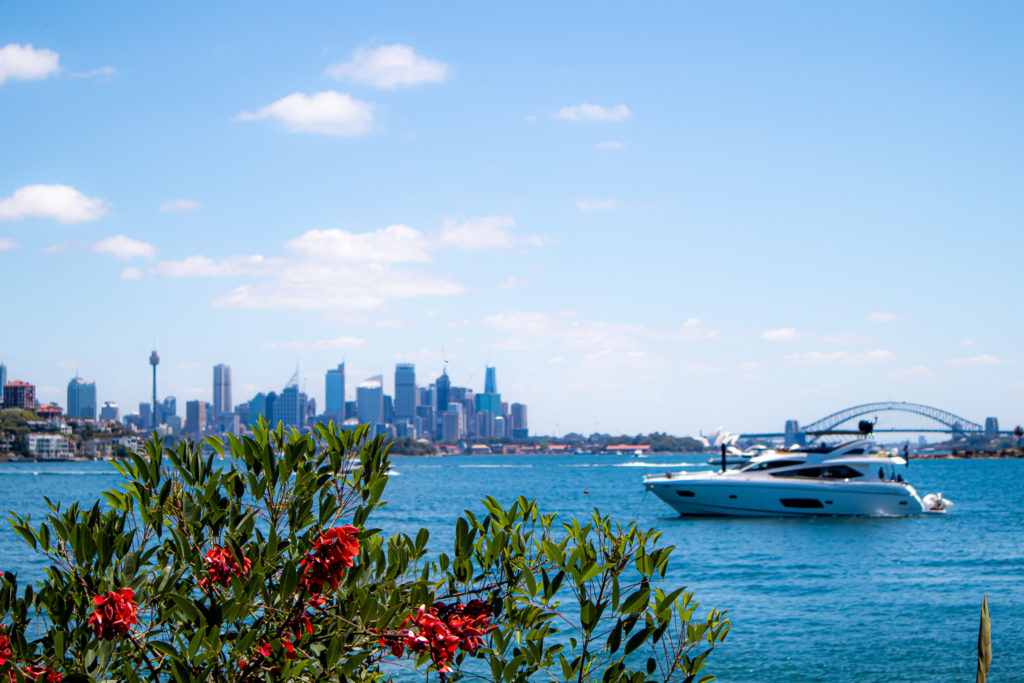 Skyline views on the Rose Bay to Watsons Bay Walk