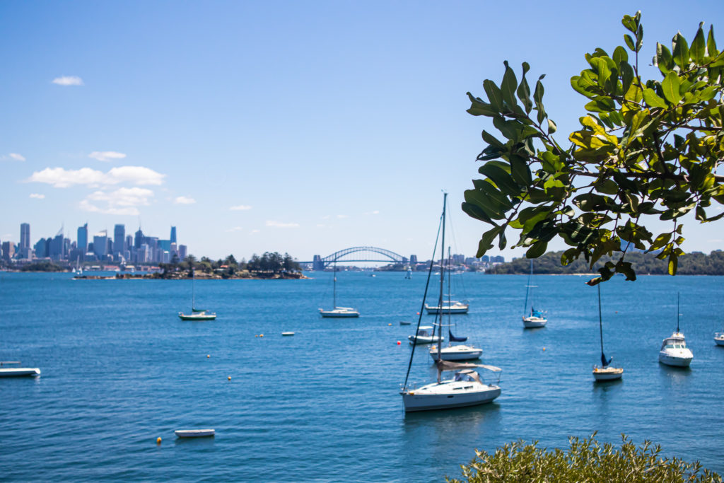 Harbour Views on the Rose Bay to Watsons Bay walk