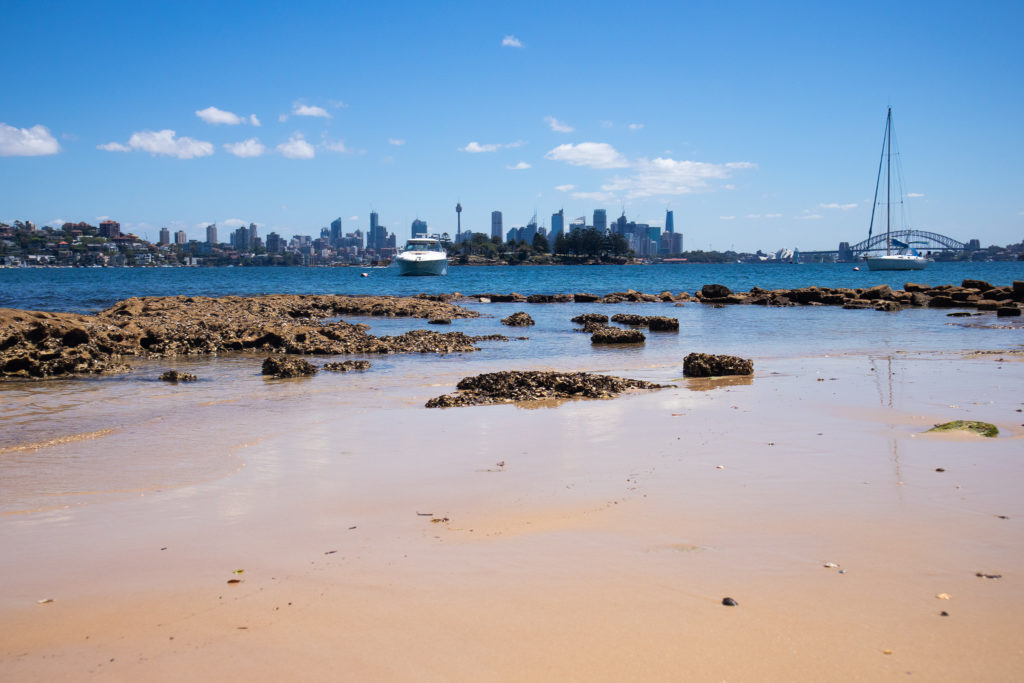 Beach on the Rose Bay to Watsons Bay Walk