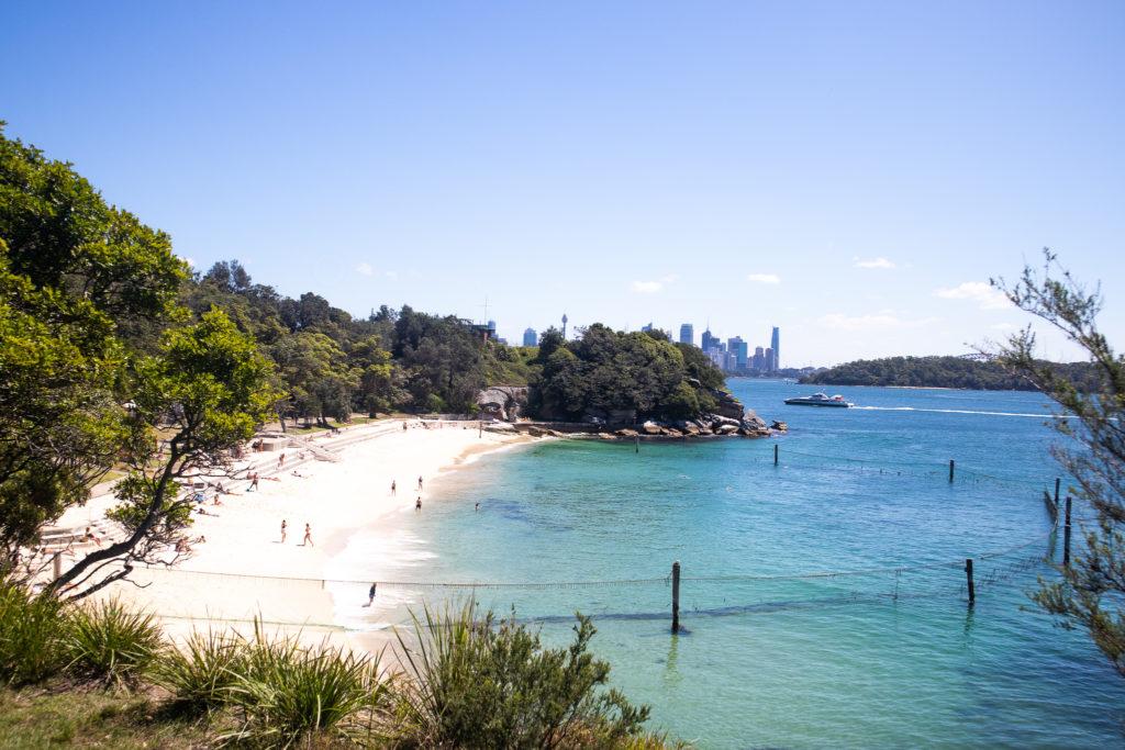 Views of Shark Beach
