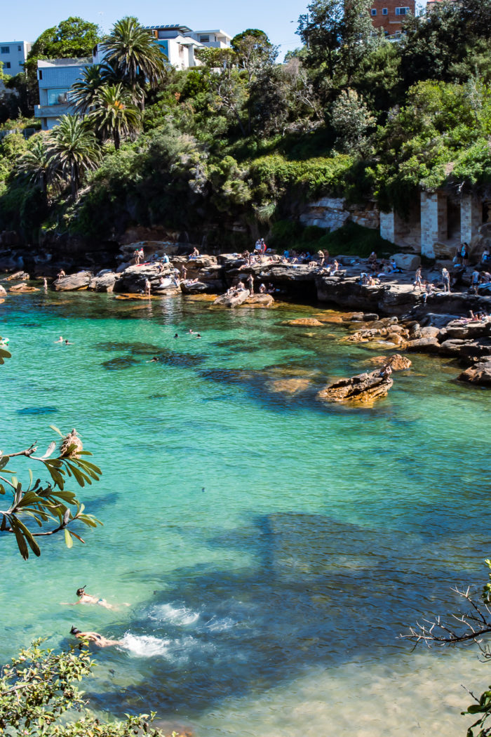 What to See on the Bondi to Coogee Walk