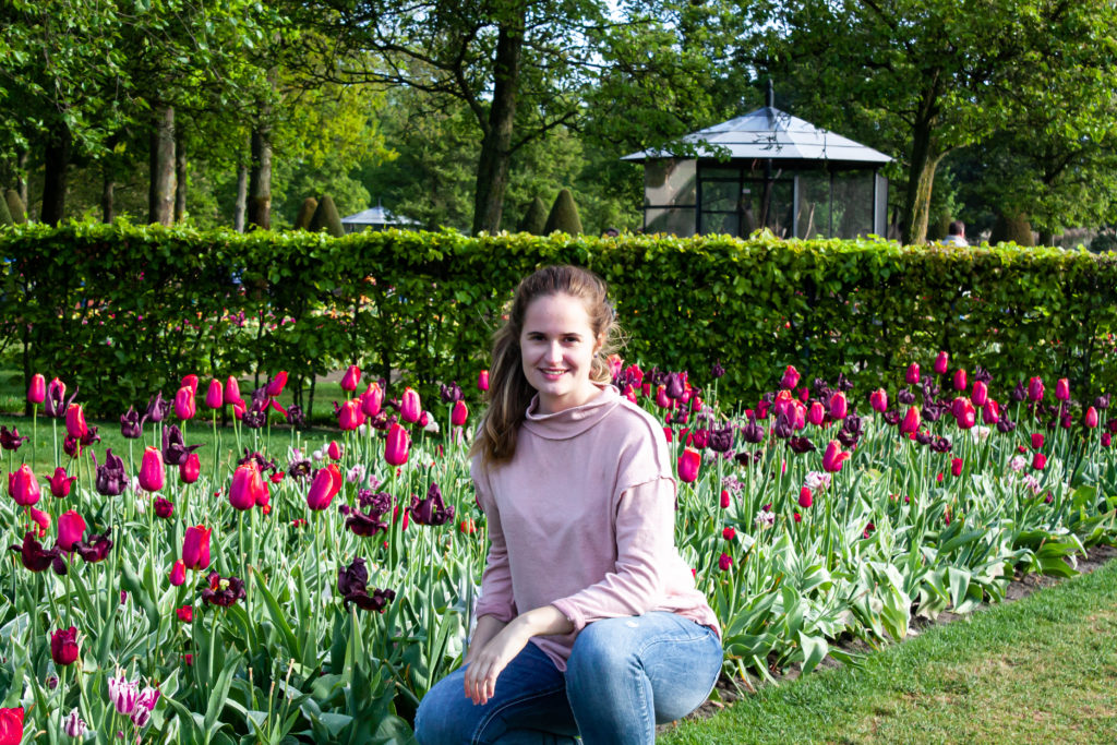 sitting in front of tulip fields in the netherlands