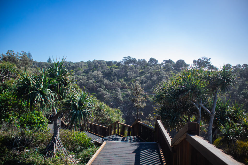 Day trip to north stradbroke island: wooden stairs on the Gorge walk
