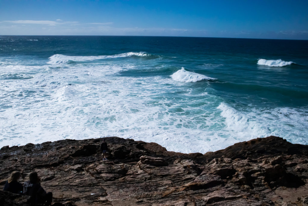 Day trip to north stradbroke island: whale watching