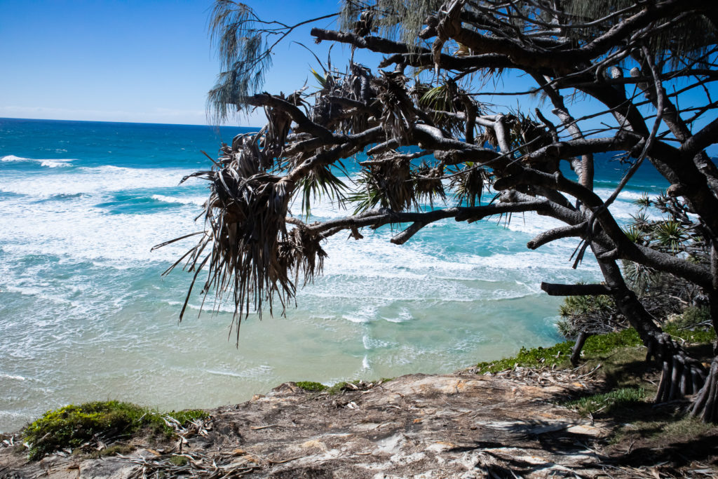 Day trip to north stradbroke island: point lookout