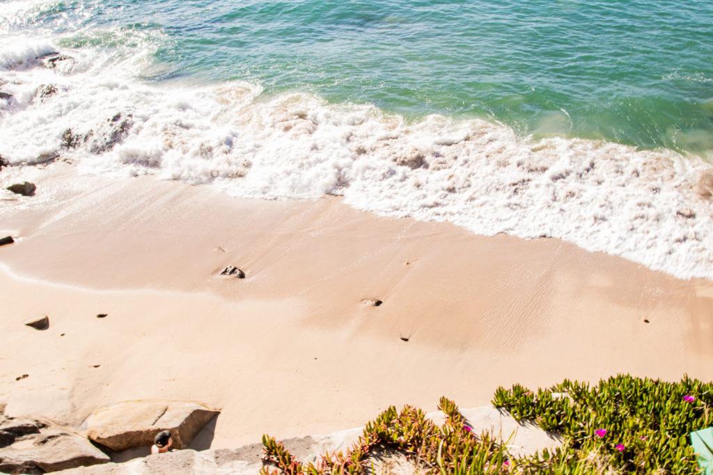 best walks in sydney: lady bay beach