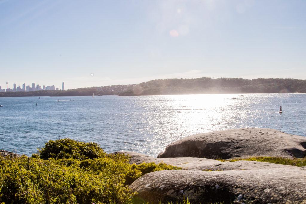scenic views on the watsons bay walk