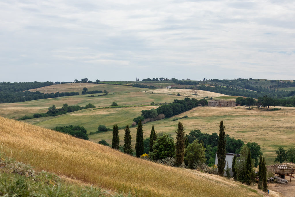 landscape of Tuscany Italy with rolling hills and cypresses