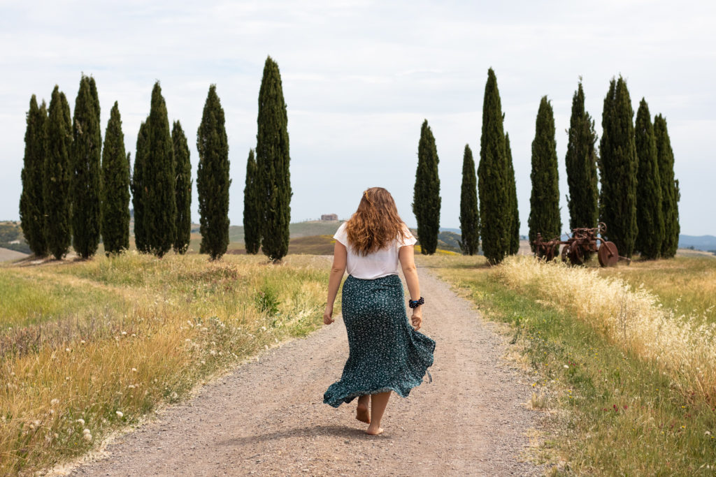 tuscany travel guide: cypresses in val d'Orcia