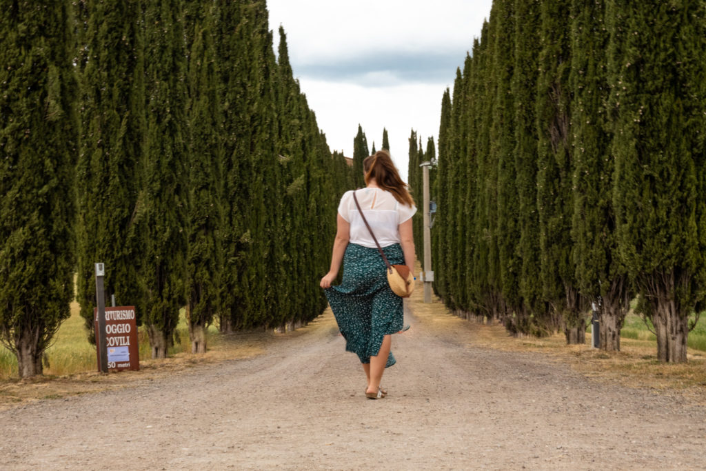 best places to visit tuscany italy: cypress alleys at an agriturismo