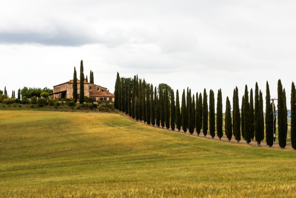 best places to visit in tuscany italy: val d'Orcia with cypress alleys