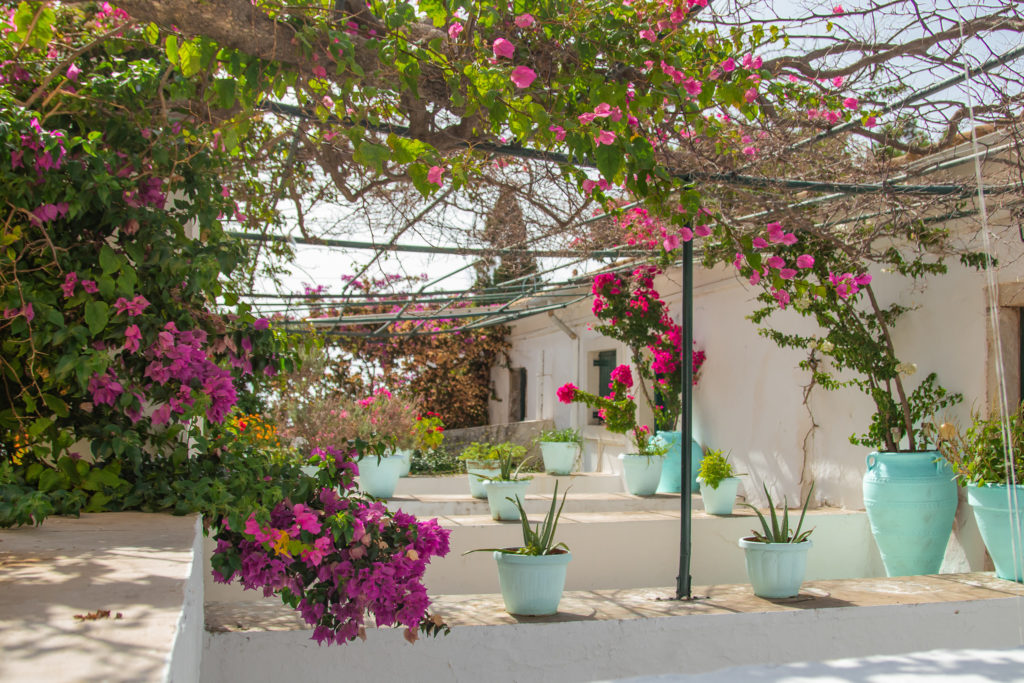 the best things to do in Corfu: Garden at Paleokastritsa Monastery